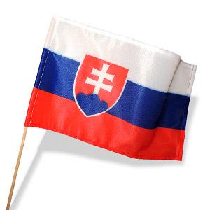 Slovakia vlajočka 30x18 cm